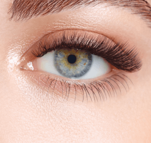 Extend Lashes