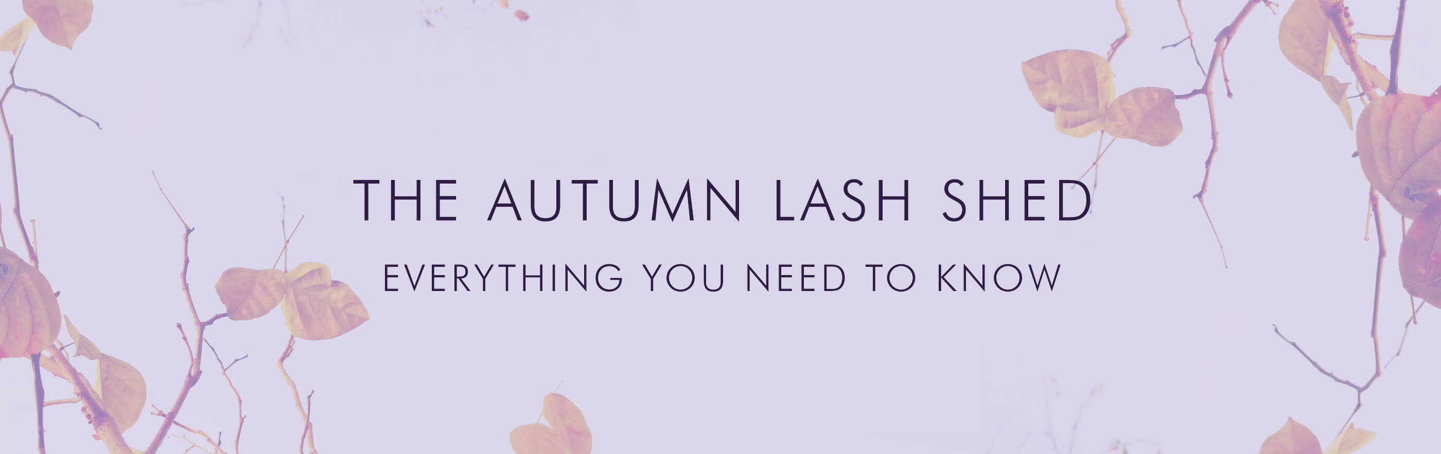 The Autumn Lash Shed: Everything You Need To Know